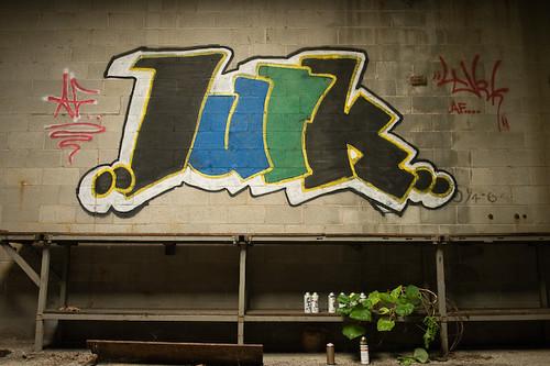 Grafitti And Plant