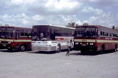 philippines nissandiesel philippinesbuses philippinerabbitbuslines busesinthephilippines philippinebuses udnissandieselbus isuzudieselbus tarlacbusterminal