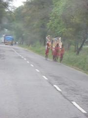 P1000274 (notagoodphotographer) Tags: india village ravi 2008 naresh haryana jaswant bhim akoda mahendergarh kharkara kavaaryatra bhimsing babasad arravalihills arravlihills