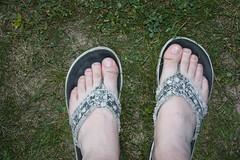 Man Declares End of Summer And Sends Flip Flops To John McCain (point_cat35) Tags: feet john michigan flip republican flop mccain sandles