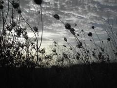 setembre (MJ Ariño_Pepa) Tags: cel paisaje ciel cielo paysage mallorca gmt paisatge naturesfinest artisticexpression