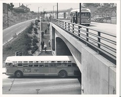 Hollywood Freeway at Alvarado 1950s (Metro Transportation Library and Archive) Tags: traffic freeways turnout hovlane latl losangelestransitlines dorothypeytongraytransportationlibraryandarchive highoccupancyvehiclelanes busexterior historypin