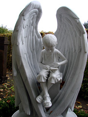 (Anders Hansen) Tags: boy white grave statue stone angel wings cemetary tomb nintendo marble engel advance gameboy vinger kirkegård gravsten
