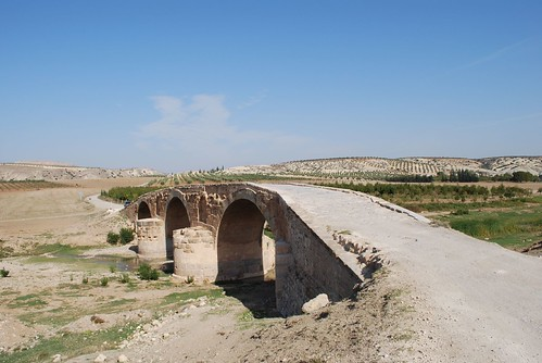 Roman bridge near Cyrrhus