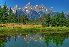 Moment in the Meadow at Schwabacher (Jeff Clow) Tags: lake mountains bravo searchthebest wyoming tetons grandtetonnationalpark schwabacherlanding jacksonholewyoming theunforgettablepictures jeffrclow vosplusbellesphotos