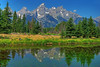 Moment in the Meadow at Schwabacher (Jeff Clow) Tags: lake mountains bravo searchthebest wyoming tetons grandtetonnationalpark schwabacherlanding jacksonholewyoming theunforgettablepictures ©jeffrclow vosplusbellesphotos