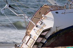 Shipwreck21 (mcshots) Tags: ocean california autumn sea sky usa beach nature water boats coast losangeles sailing stock socal shipwreck sailboats mcshots mdr pdr