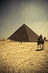 Egyptian Rules (Khaled A.K) Tags: photography pyramid egypt cairo camel khaled giza aplusphoto kashkari