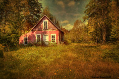 (ir guy) Tags: old house ny fall texture upstate overlay canon5d 2008 supershot platinumphoto anawesomeshot impressedbeauty aplusphoto isawyoufirst infinestyle jeremyholmes overtheexcellence goldstaraward flickrlovers jeremyholmesphotography imagsforthelittelprince