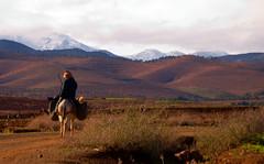 Berber (sillie_R) Tags: mountain geotagged morocco valley atlas marrakech asni asnivalley atlasdaytrip geo:lat=3139043875 geo:lon=791493667