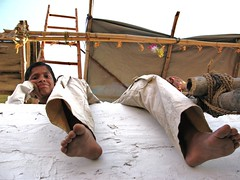Damodel on top of the Sunset Point deck - Pushkar Camel Festival, India