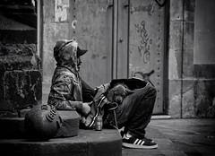 Thug Life (SlapBcn) Tags: barcelona urban bw dog puppy born weed bcn bn perro cachorro urbana slap adidas callejeando nostress thuglife blancinegre candidshot robado cadell 18200vr nikond80 paseandoalperro slapbcn paseandoseaunomismo