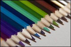 Crayons (1)