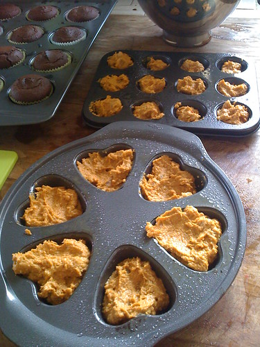 pumpkin muffins  in the  pan