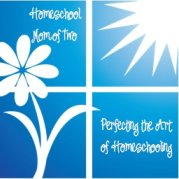 Perfecting the Art of Homeschooling