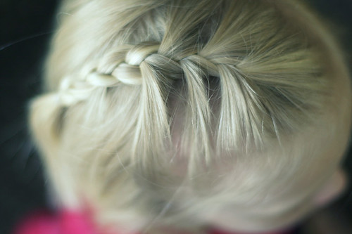 the tiny braid