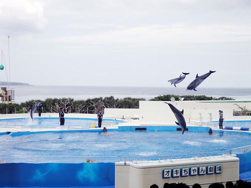 Okinawa_11_1