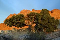 Kissing Camels, Garden of The Gods, Colorado Springs, Colorado (Ken'sKam) Tags: nature colorado gardenofthegods coloradosprings geology kissingcamels westernusa allnaturesparadise