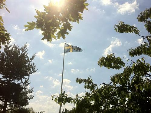 Hissad flagga 6 juni