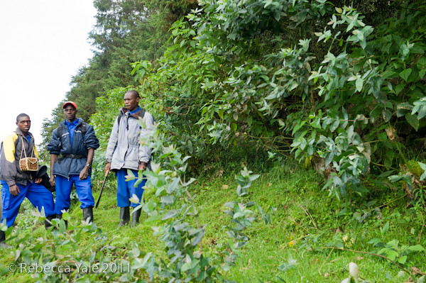 RYALE_Rwanda_Uganda_Safari-16