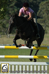 30th-March-332 (michael_marsh_photos) Tags: horse equine showjumping showjump jumpclub berryridingclub michaelmarsh michaelmarshphotos