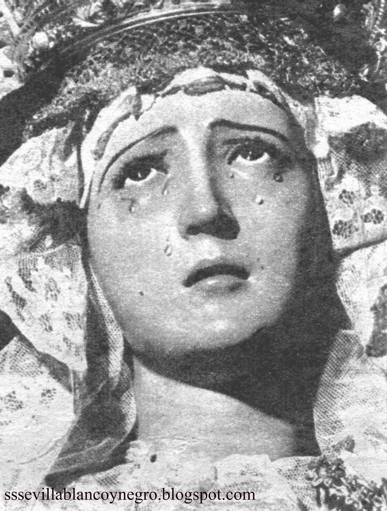 Dolores S.V. 3