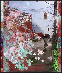 Downtown Cycle (Tim Noonan) Tags: street flowers green art modern digital photoshop effects photo downtown ride searchthebest vivid manipulation pop cycle painter imagination ago mosca hypothetical enhancement blueribbonwinner artisticexpression darklands vividimagination abigfave shockofthenew artlibre flickrplatinum sotn superbmasterpiece amazingamateur proudshopper theperfectphotographer goldstaraward stealingshadows sharingart maxfudge awardtree magicdonkeysbest maxfudgeexcellence maxfudgeawardandexcellencegroup daarklands