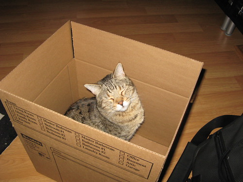 korben_in_a_box