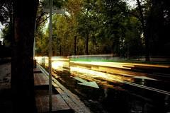 Reforma (Krynowek Eine) Tags: street cold color cars rain de la calle lluvia df raw time paseo adobe autos reforma frio coches lightroom timing expocicion