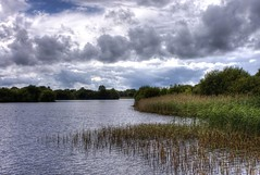 Wetlands: Reed Harvest (Tim Blessed) Tags: uk sky nature water clouds reeds landscapes countryside scenery lakes wetlands anawesomeshot singlerawtonemapped