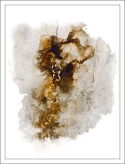 abstracte de la via (desdibuix - miquel) Tags: abstract wall girona mur paret desdibuix bohigas miquelbohigascostabella abstracte canoneos400ddigital multimegashot