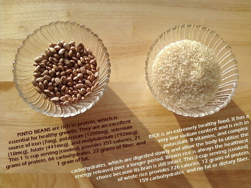Nutritional Information about Pinto Beans and Rice