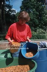 lz43054 (Lothar Lenz) Tags: msli futter ftterung haltung kraftfutter stallarbeit