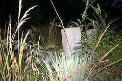 IMG_4791 (Lrayjohnson) Tags: cemetary fraternal afa ghosthunting