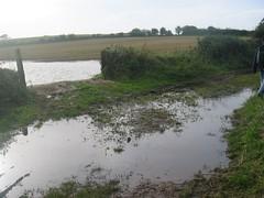 3 Flooded path ahead