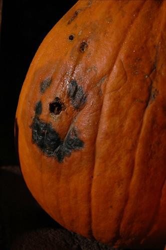 PumpkinFacejpg