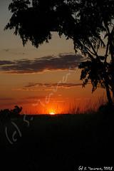 Atardecer tras mi casa (S.Yaras) Tags: sunset espaa orange sol canon atardecer sevilla spain seville naranja ocaso alcala yaras guadaira naturesfinest sigma18200 mywinners eos400d kissdigitalx ultimateshot citrit supein alcalaguadaira syaras