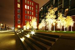 Frankfurt Westhafen 5 (N.Muehlenbeck) Tags: wasser frankfurt main westhafen leben nachtaufnahmen dergerippte