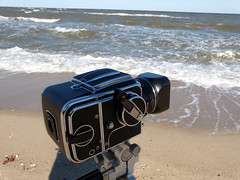 hasselblad 500 c/m by the bay (MasterGeorge) Tags: camera 120 photography cm hasselblad medium format mm 500 120mm