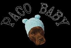 paco baby logo