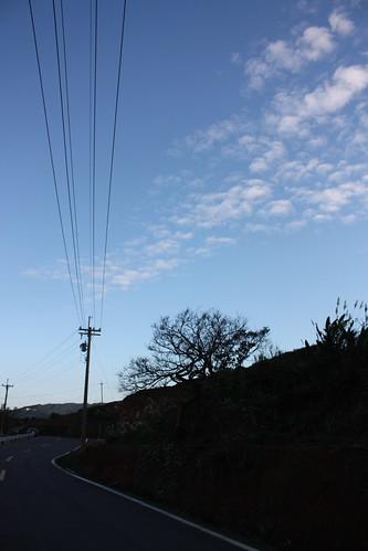 IMG_2959.JPG