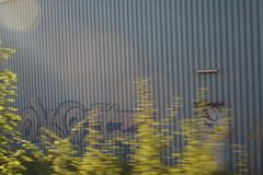 IMG_4842 (Simon.Stickel) Tags: ocean auto camera trip trees ladies girls friends sunset red sea people orange woman cloud sun white black mountains flower macro tree sexy green simon cars beach church nature water rose yellow wall clouds sailboat laughing sunrise ball germany nude logo happy deutschland fire graffiti boat office woods women europe dress purple farm butt farming northcarolina visit pot santorini laugh latex spraypaint srilanka farmer roads pollen tied freising onthestreet wildstyle selectivecoloring stickel simonstickel streetartfreehand