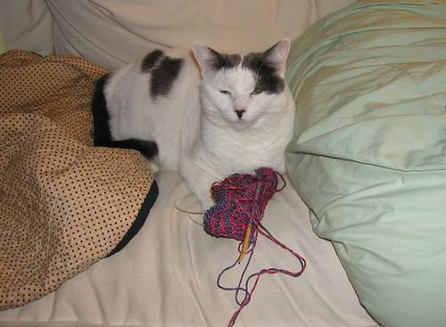 knitspoon