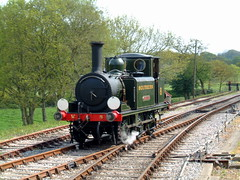 Freshwater runs round at Wootton (rcarpe2) Tags: