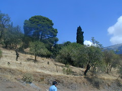 Part of Ancient Delphi