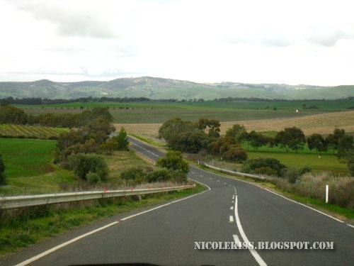 barossa valley roadtrip
