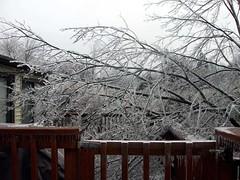 IceStorm_121208_porch