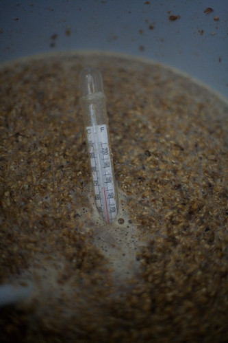 thermometer reading from inside the mash tun