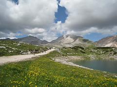 Wonderful world - Fanes Natural Park, Dolomites Dolomiti