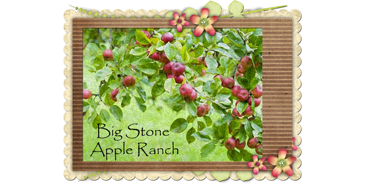 Big Stone Apple Ranch